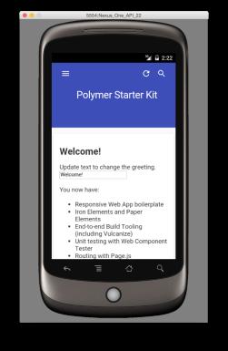 Polymer output in Emulator